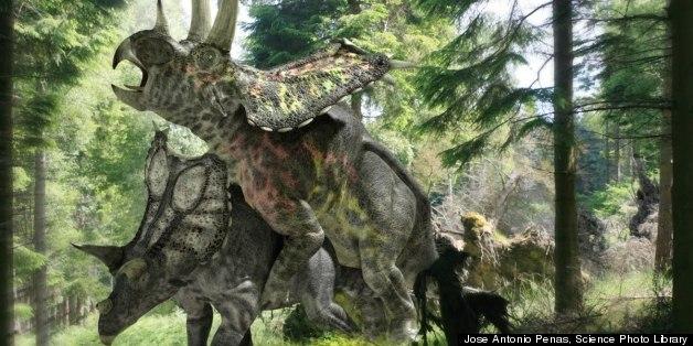 Dinosaur Human Sex Porn - Jose Antonio Penas, Science Photo Library