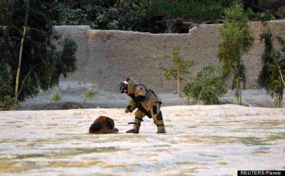 jalalabad afghanistan suicide bomber
