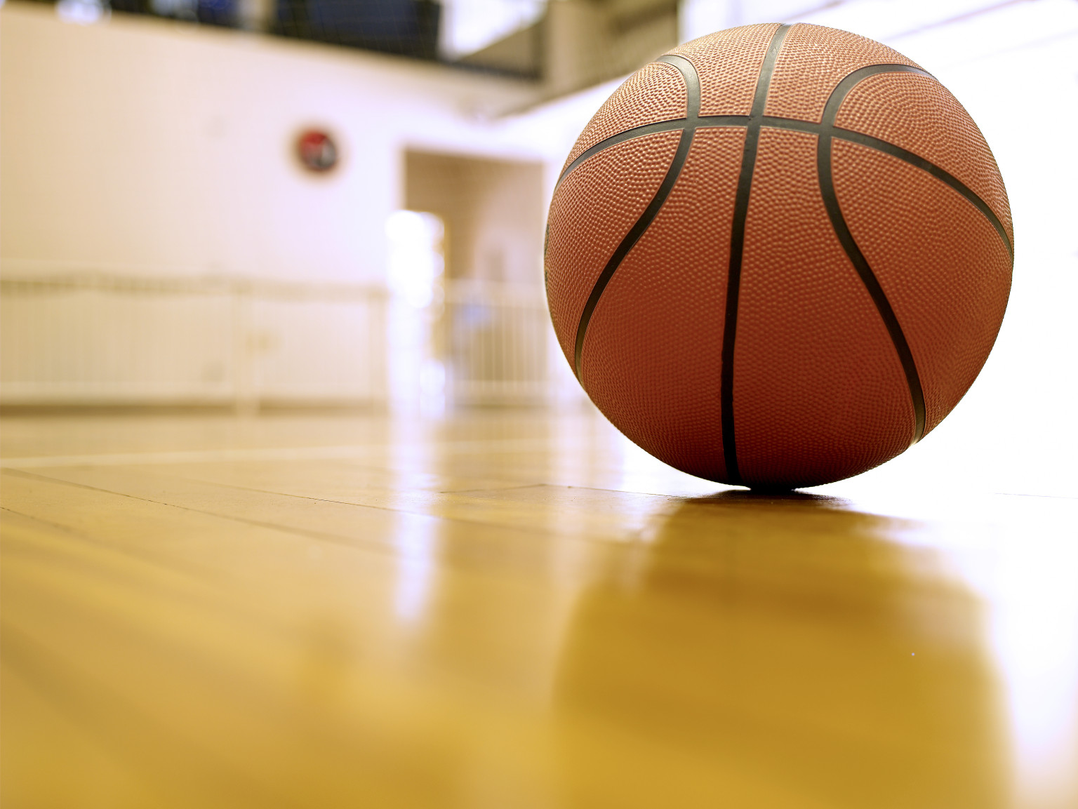 Basketballs volleyballs can harbor bacteria research for How much to build a basketball gym