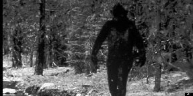 Bigfoot DNA Tests: Melba Ketchum's Research Results Are Bogus, Claims Houston Chronicle Report