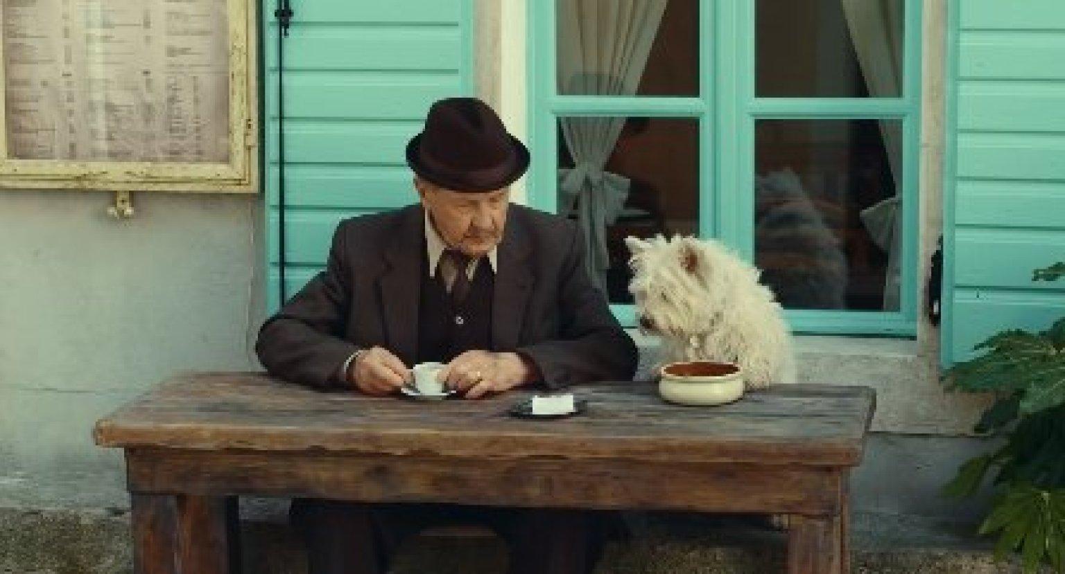 Cesar S Love Them Back Dog Food Commercial Proves Dog Is