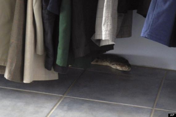 escaped python