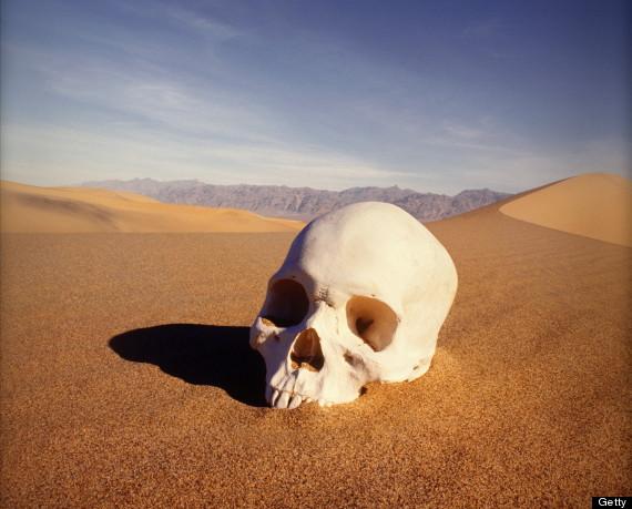 human skull desert