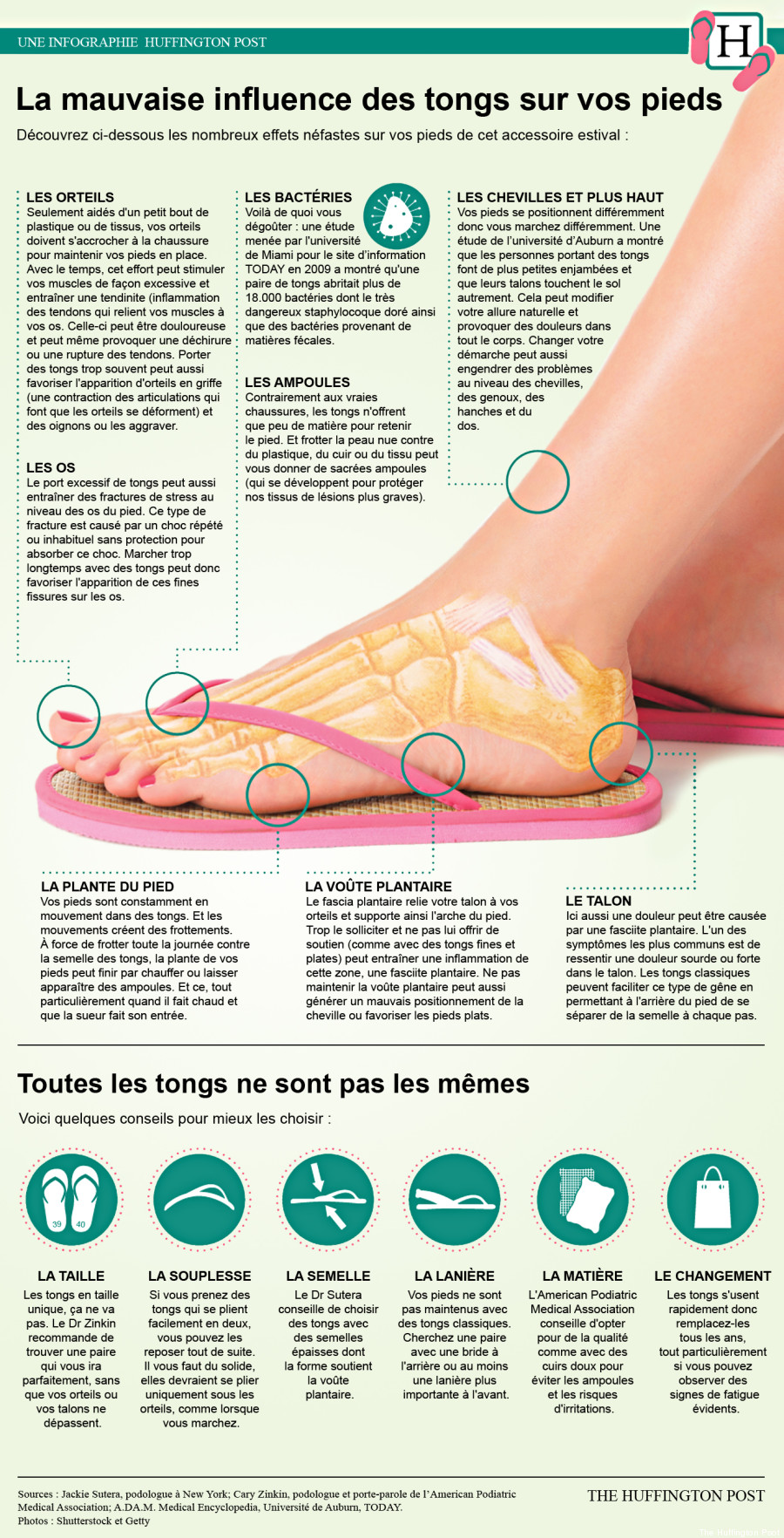 tongs infographie