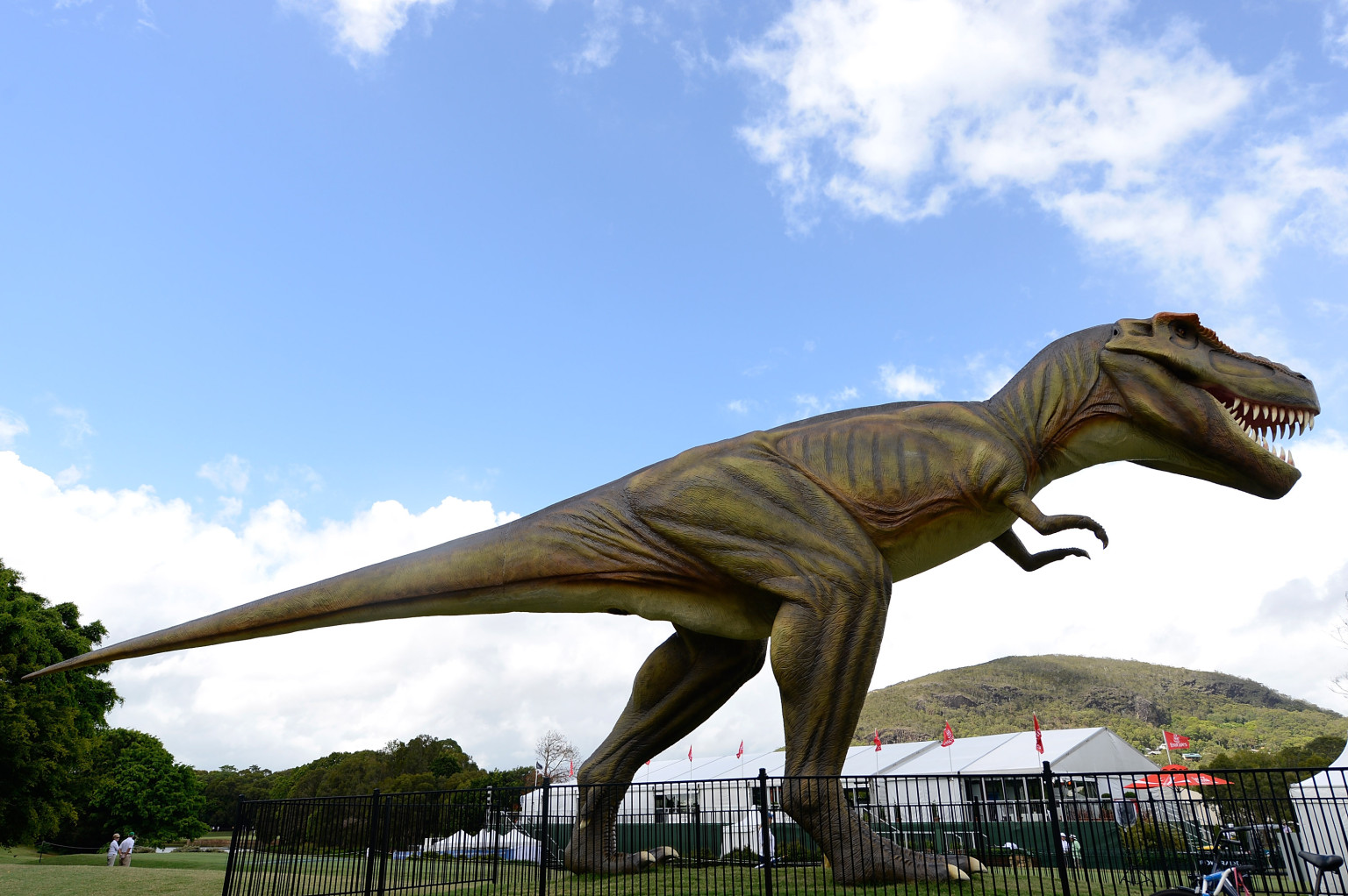 Largest Dinosaur Ever Discovered Heads To Field Museum Sue The T Rex Moves Exhibition