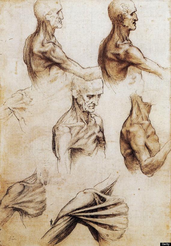 Leonardo Da Vinci Exhibition Shows Extraordinary Accuracy Of