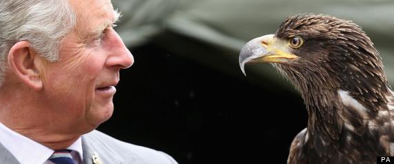 prince charles eagle