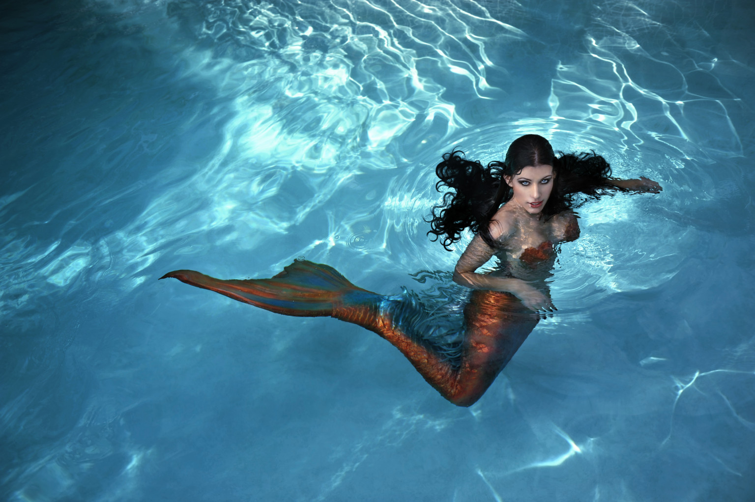 an open letter to the little mermaid you u0027re going to lose the