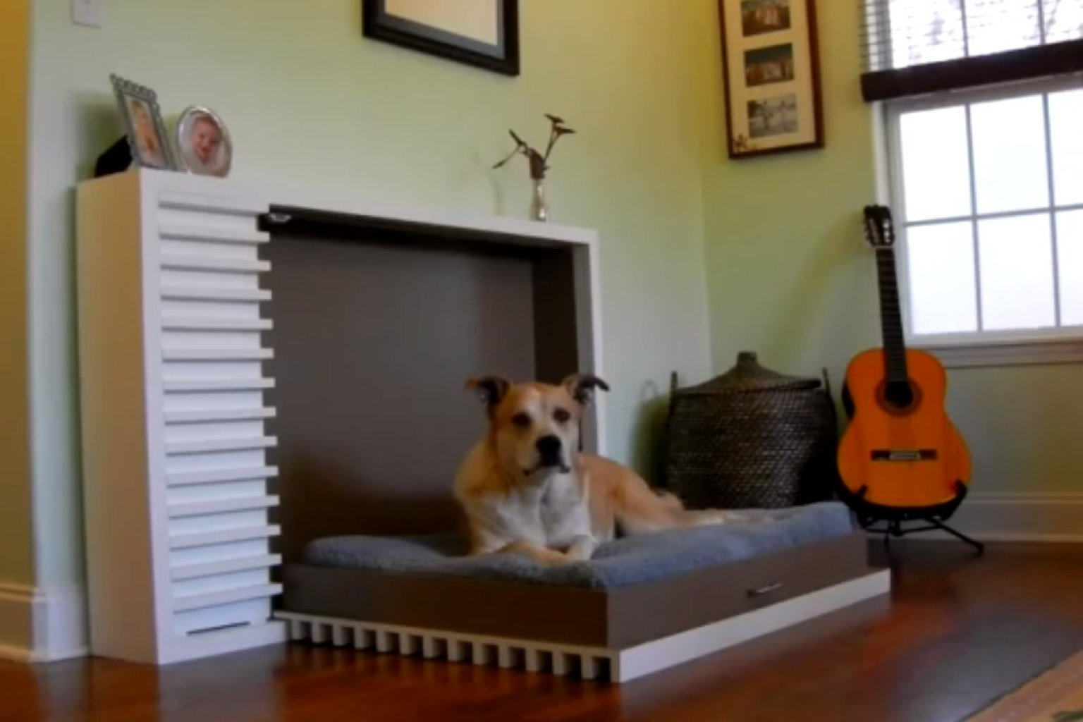 The Modern Fold Out Pet Bed By Murphy S Paw Design Is
