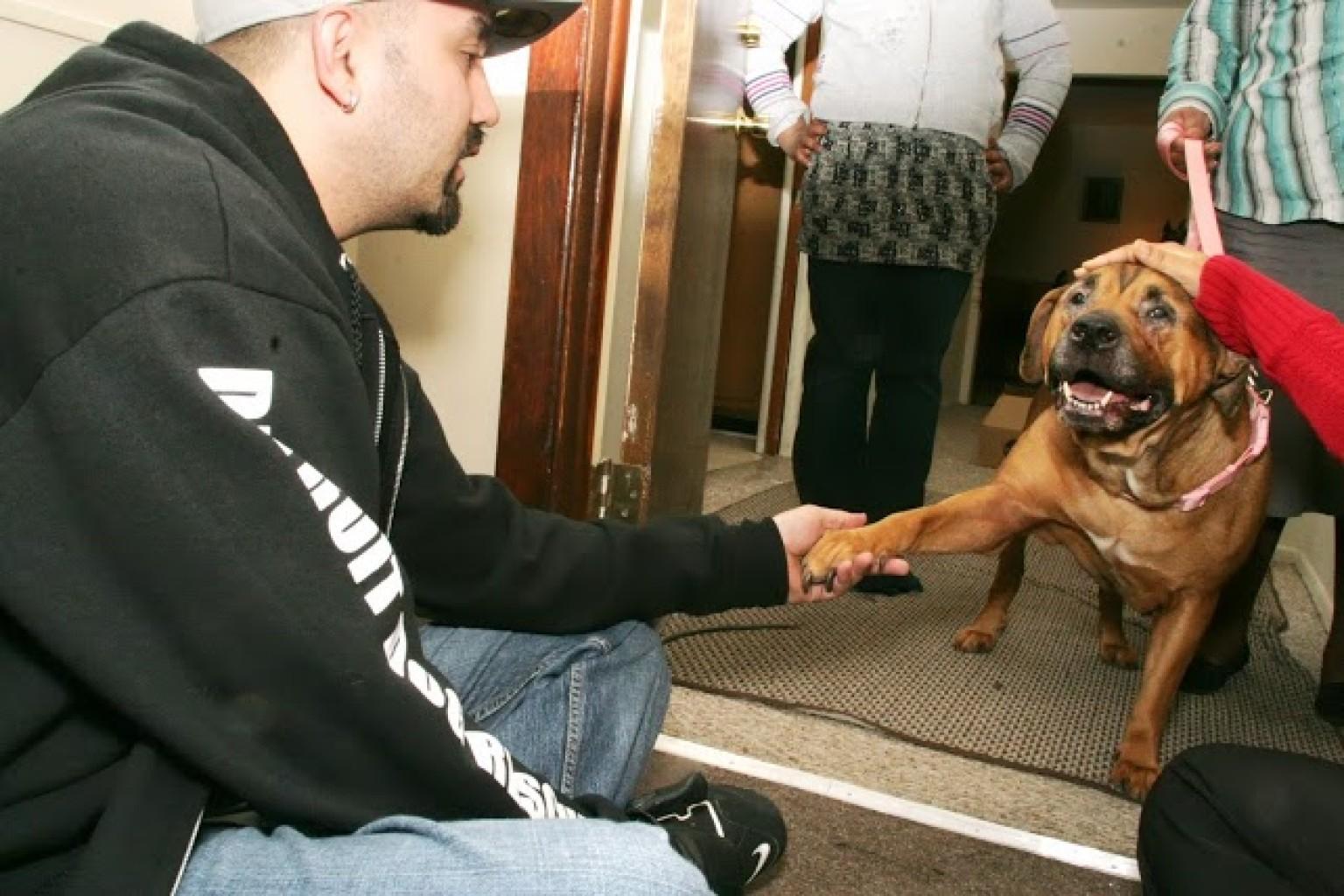 Rapper Hush Dog Rescue