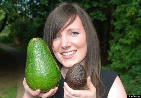 avozilla avocado