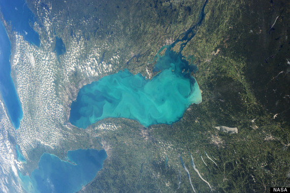 lake ontario algae1
