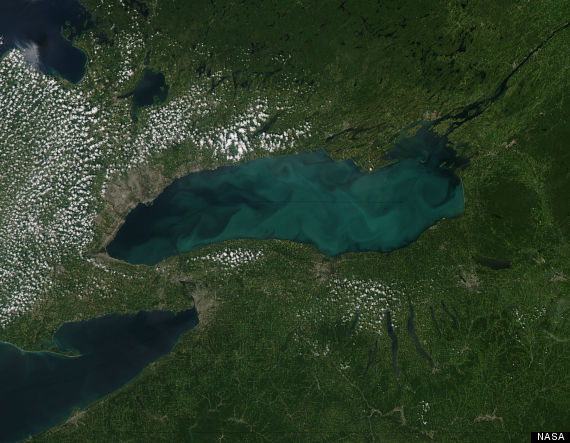 lake ontario algae 2