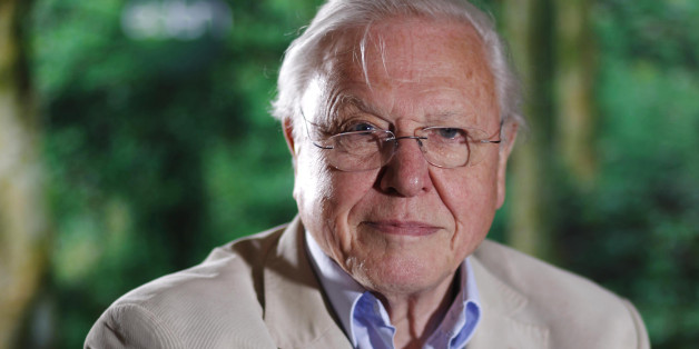 Attenborough interview