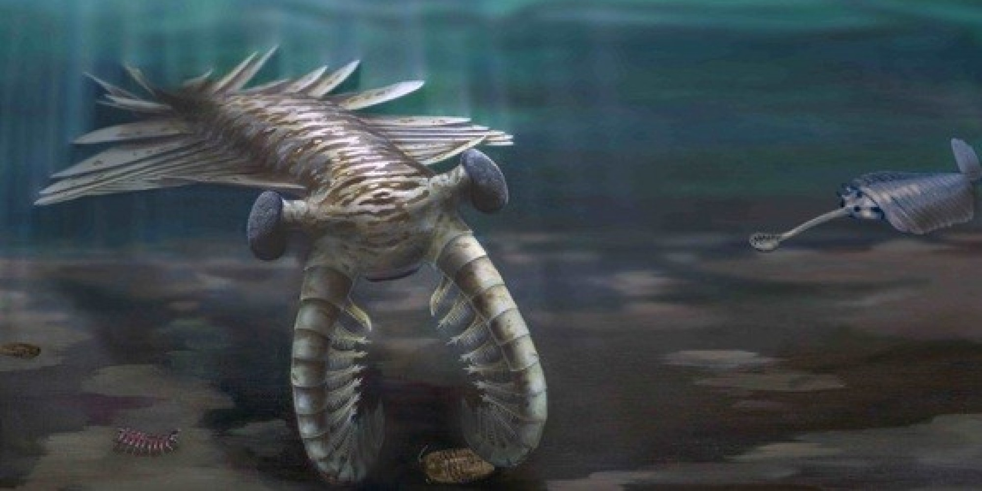 an essay on the cambrian period The cambrian period marks the beginning of the paleozoic era this period gets its name from a place in wales where the first examples of this type of ancient life was found.
