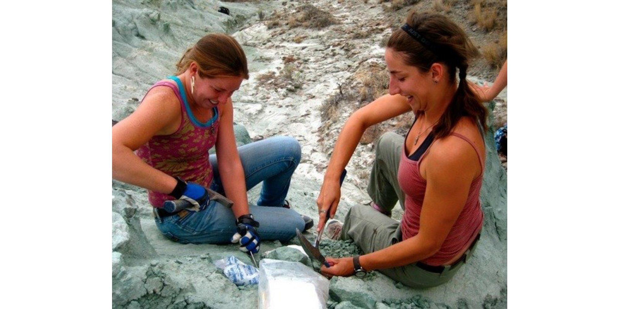 10 Tips For Aspiring Paleontologists Huffpost