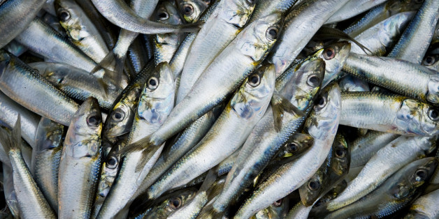 Omega-3, found in oily fish and nuts, was previously thought to improve thinking
