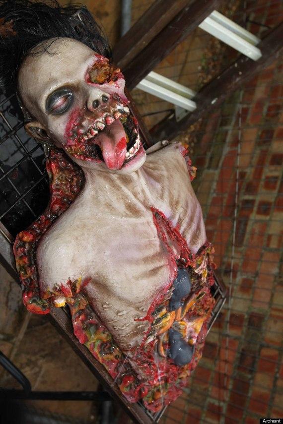 halloween decoration james creighton