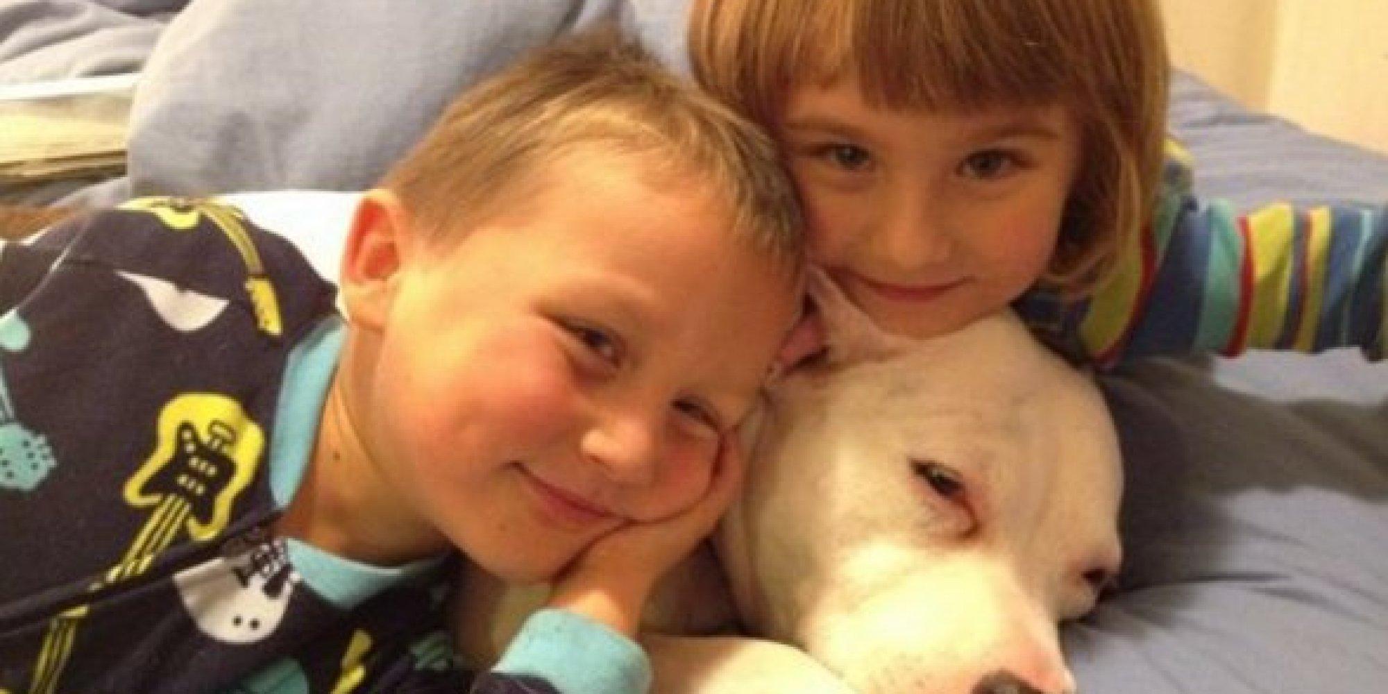 pitbull for kids | Kids