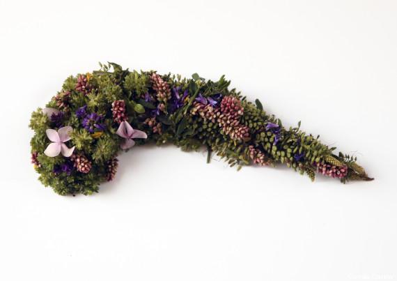 pancréas végétal