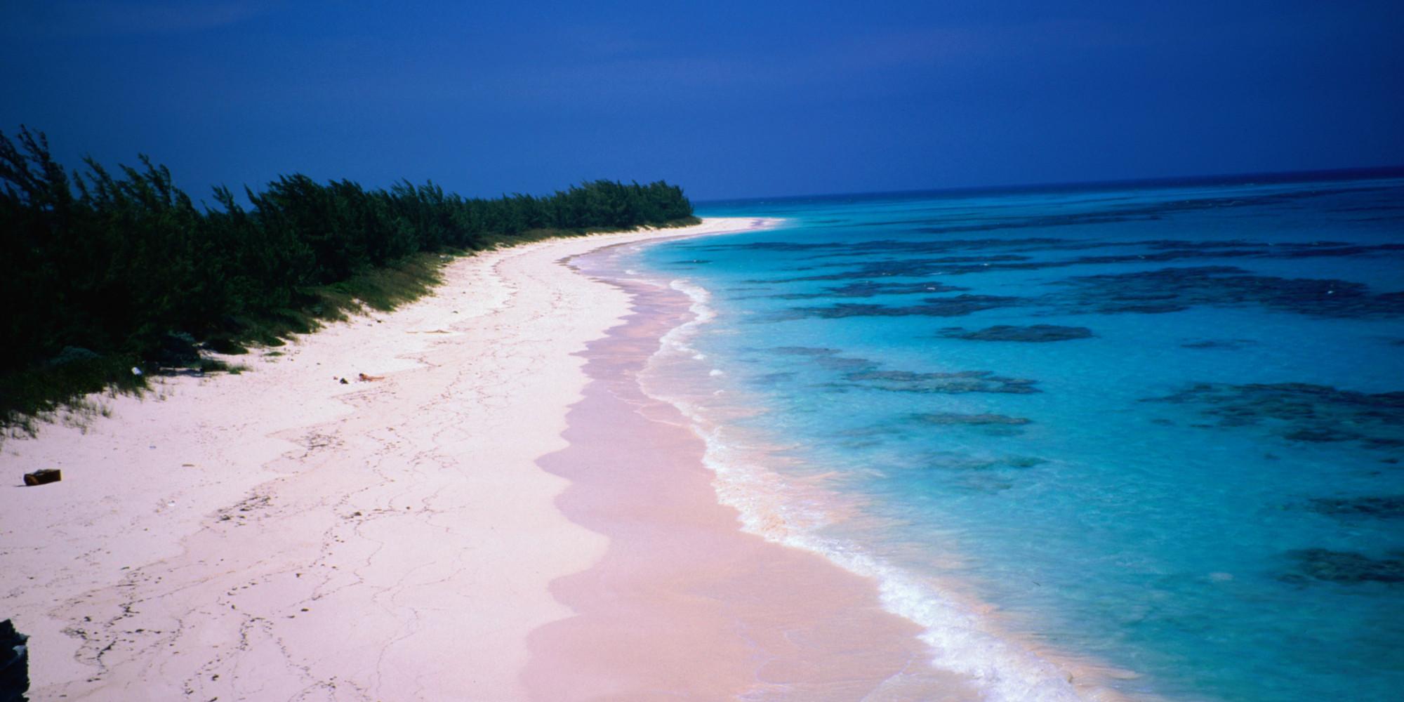 Pink Sand Beach In California The Best Beaches World