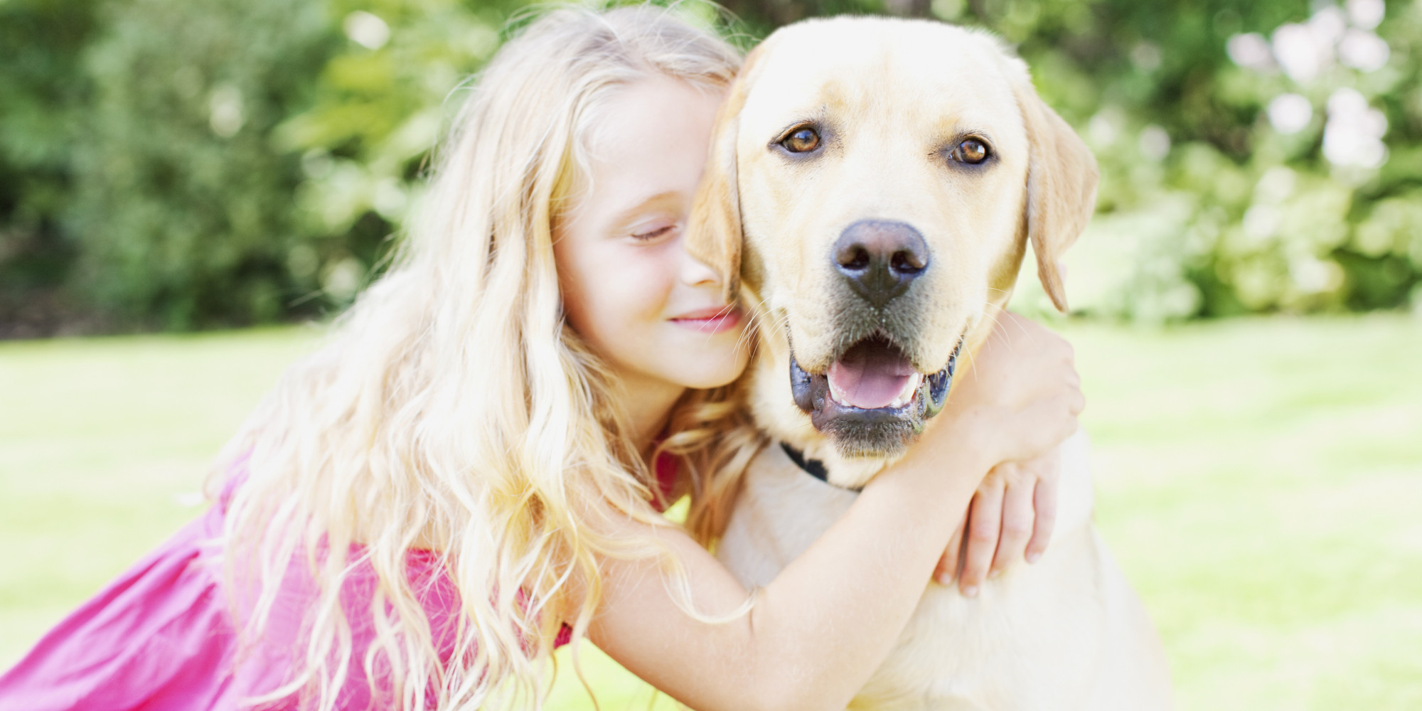 Credit Cards for Pet Expenses