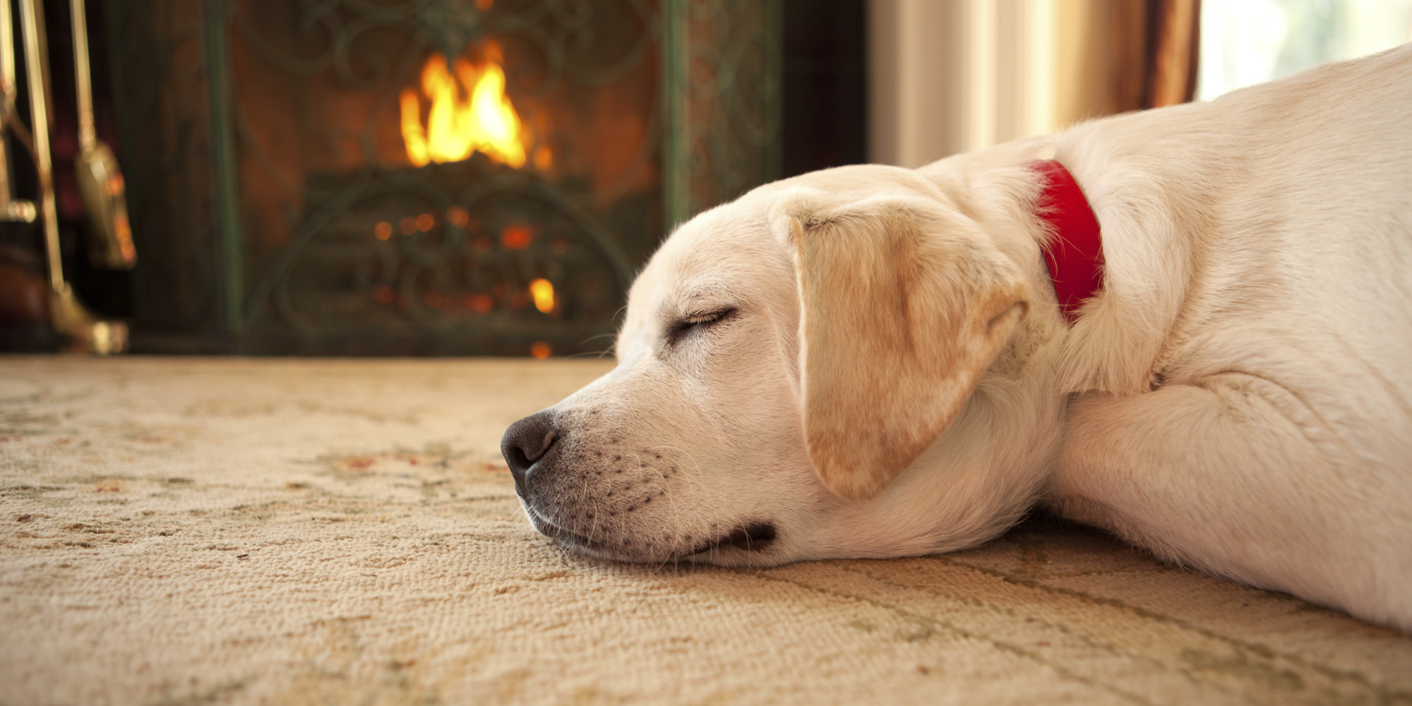 8 fireplaces to help unwind your mind huffpost