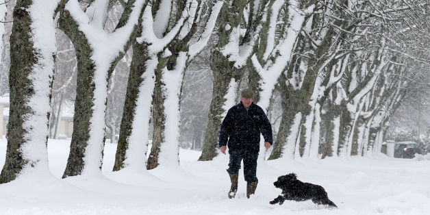 A man walks his dog near Auchterarder, Perthshire after heavy snowfall overnight.