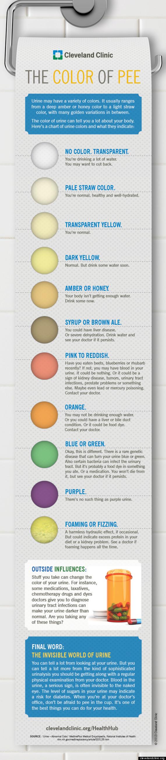 urine infographic