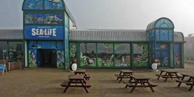 Hunstanton Sea Life Sanctuary in Norfolk