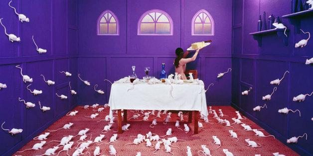 L'artiste Jee Young Lee transforme son studio en pays des merveilles