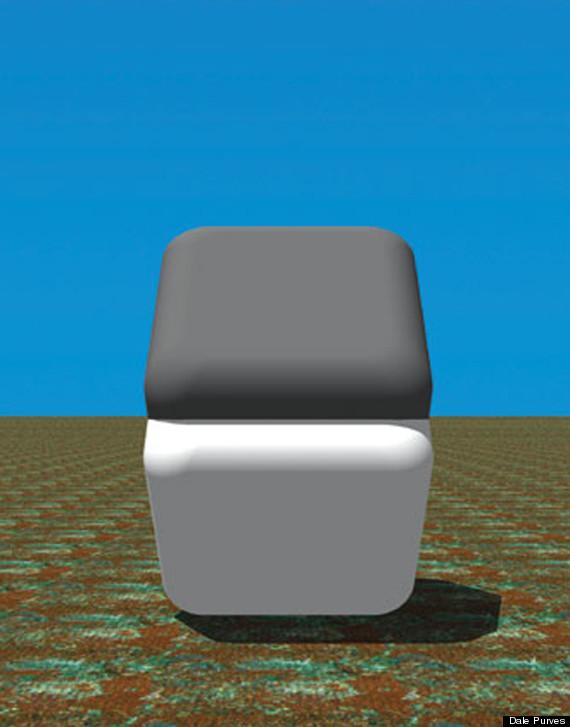 optical illusion colours