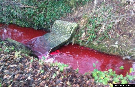 blood red river northampton