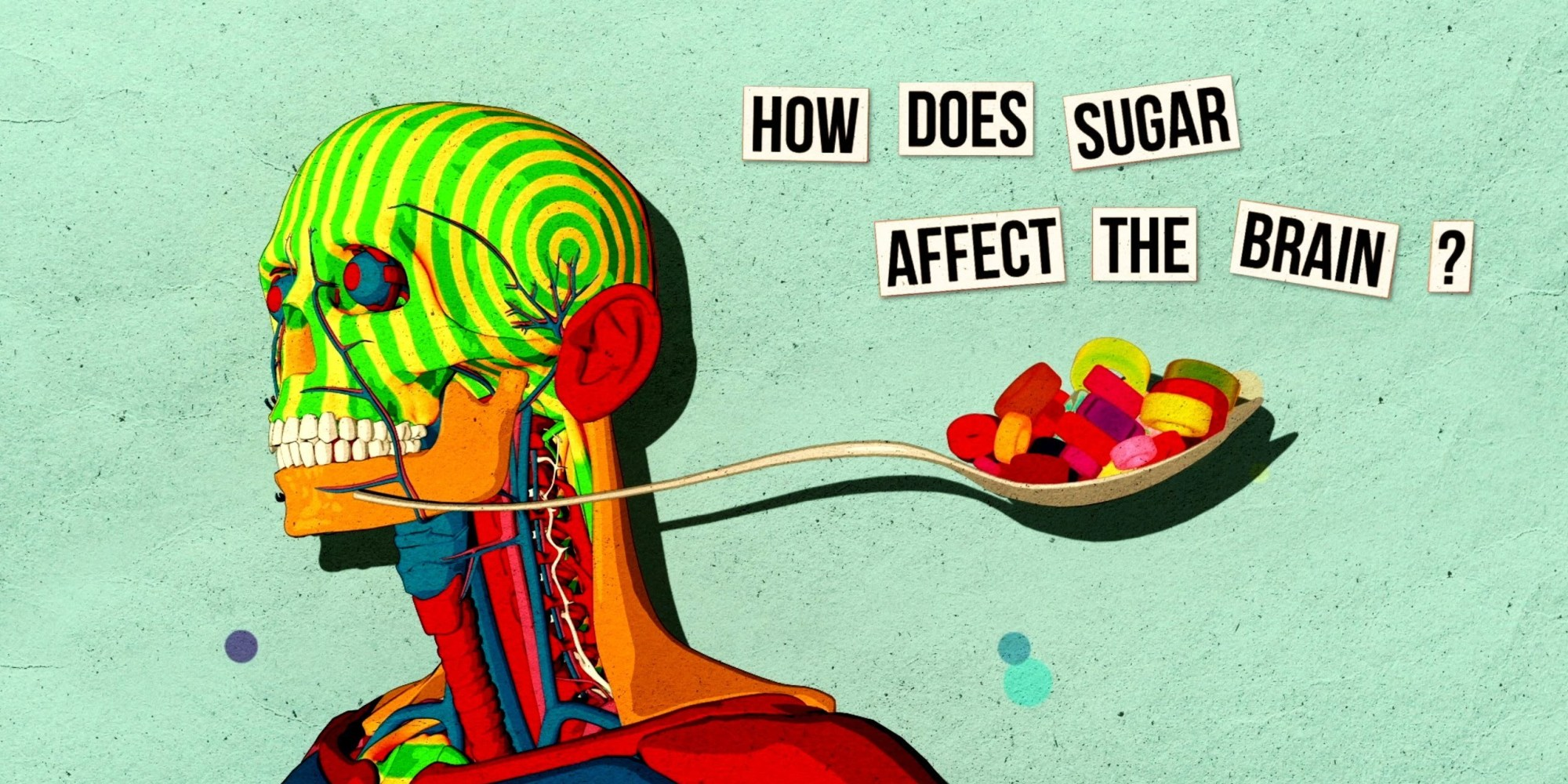 This Is Your Brain On Sugar Video Huffpost