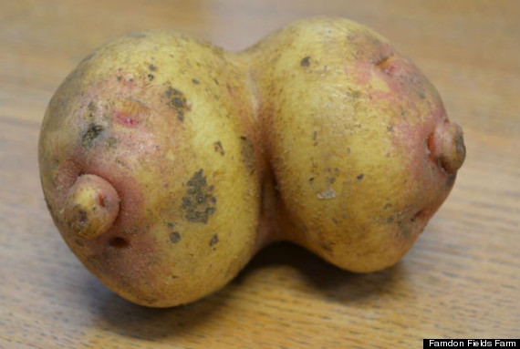 boobs potato