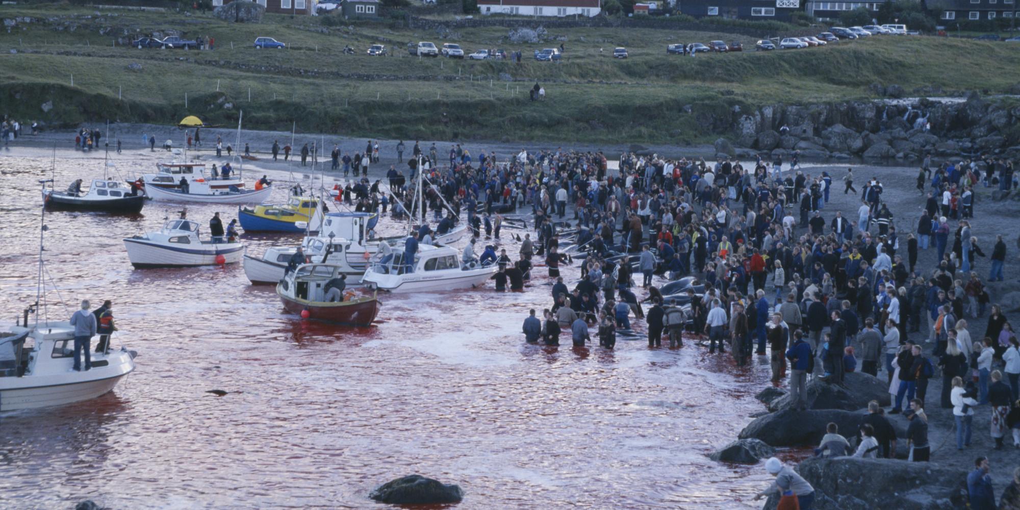 Getting To Faroe Islands From Uk