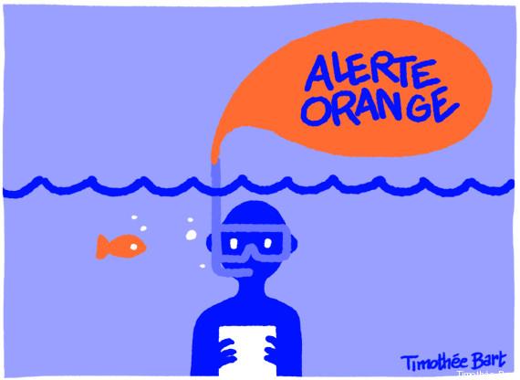 timothee bart alerte orange