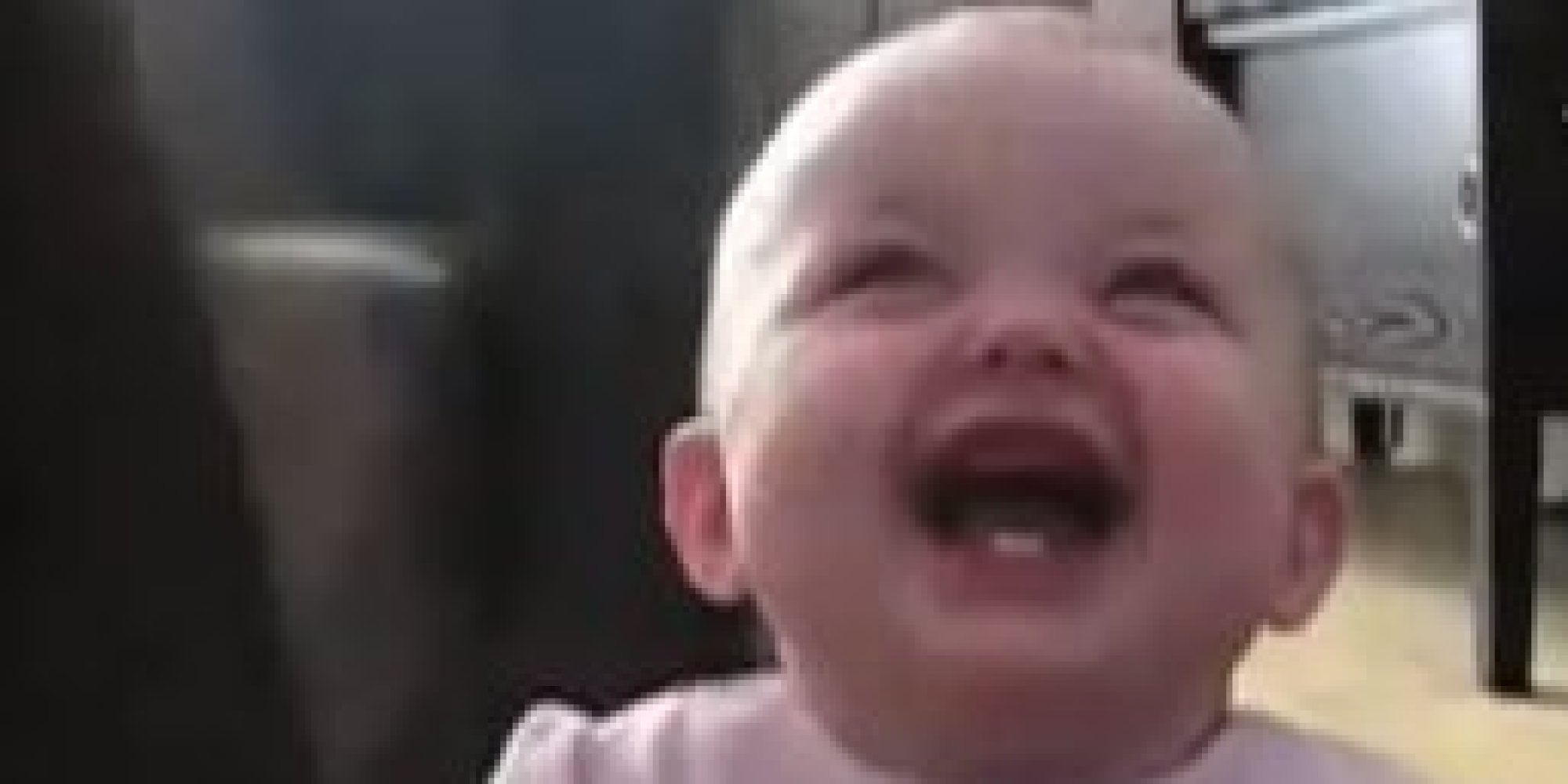 o BABY LAUGHING DOG facebook baby's uncontrollable laughter while watching a dog being fed