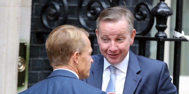 Education Minister David Laws (left) and Education Secretary Michael Gove arrive for a cabinet meeting at Downing Street in London, after Prime Minister David Cameron hailed his new-look top team, insisting he had put the right people in place to kick start the flagging economy.