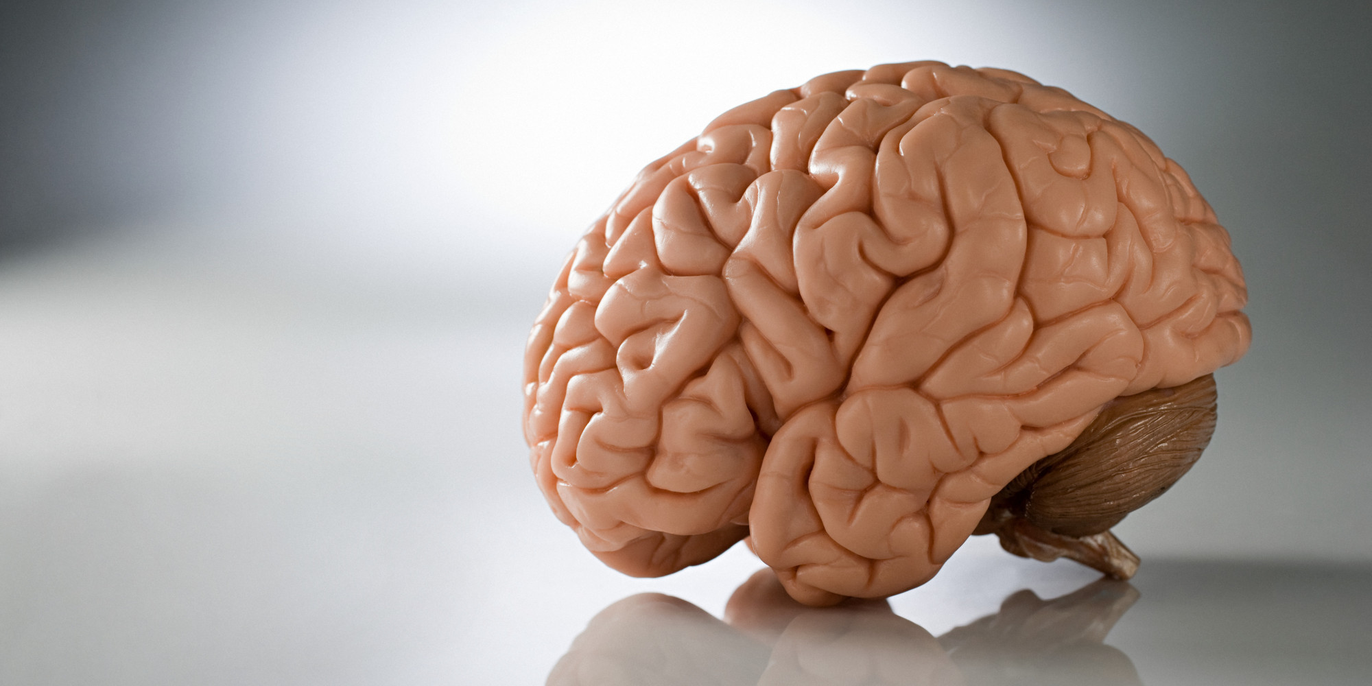 Do brain games really boost brain power huffpost ccuart Gallery