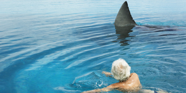 US Saw A Total Of 53 Shark Attacks In 2013 Guess Which State
