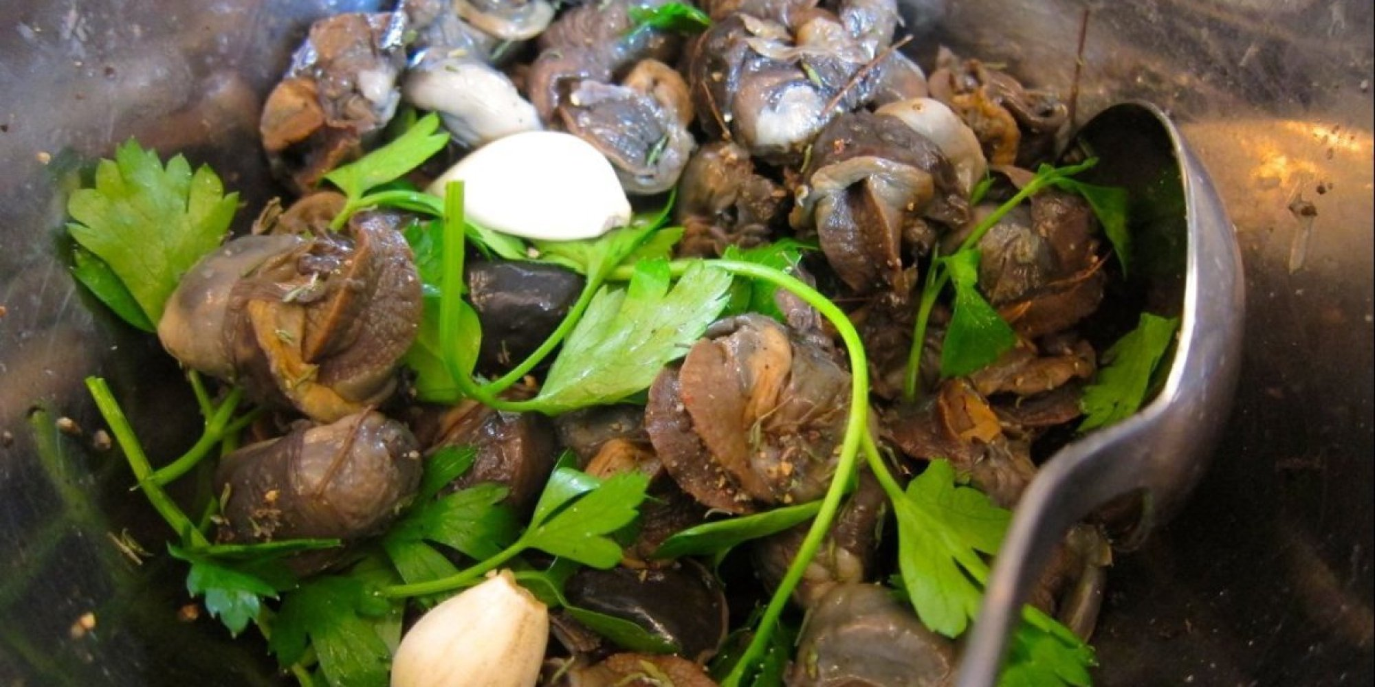 canned escargot recipes