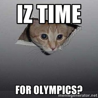 ceiling cat sochi