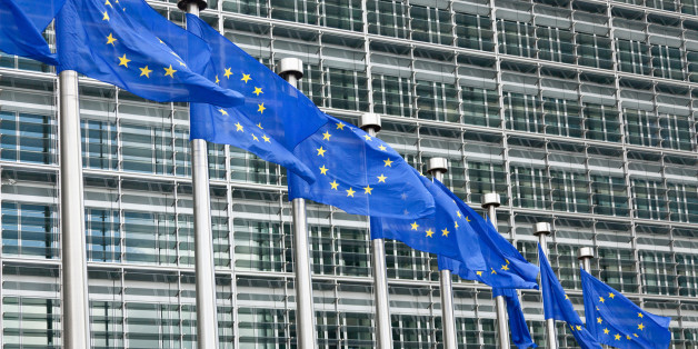 Regulations brought in under the latest European Union treaty have cost British businesses more than £12 billion
