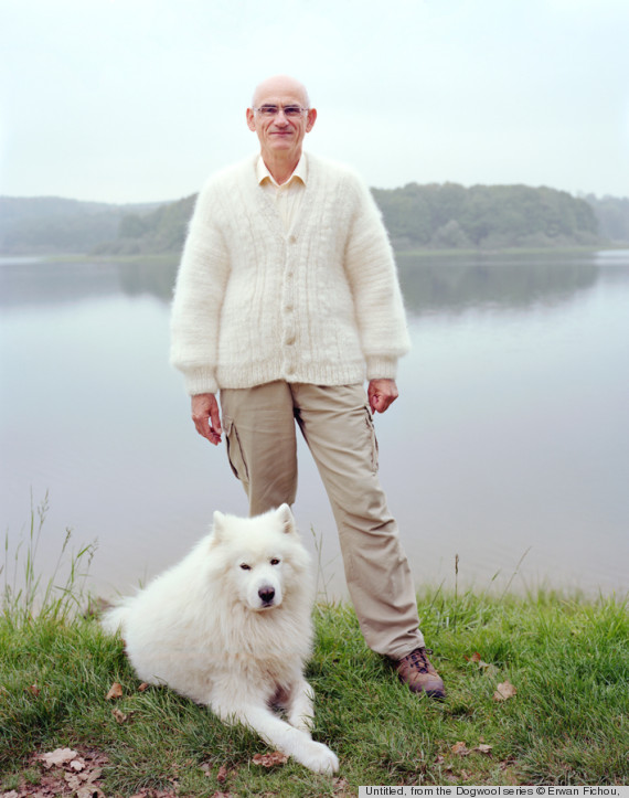 dog fur two