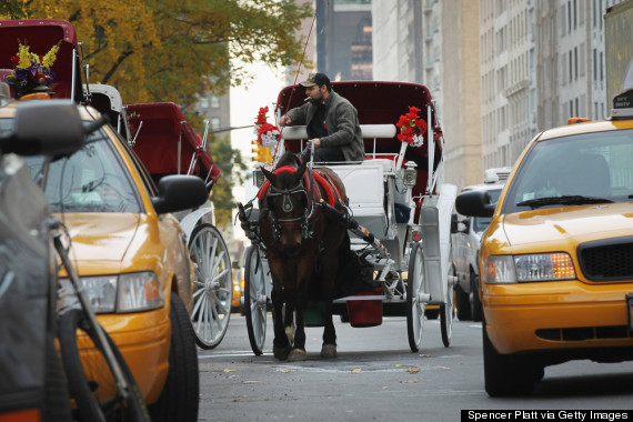 new york horse carriage