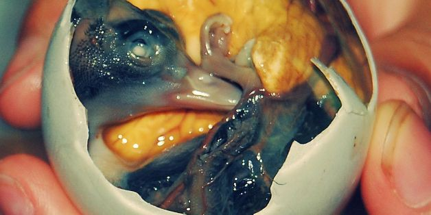 Bizarre But Delicious Filipino Dishes That Parents Have To Trick Their Kids Into Eating
