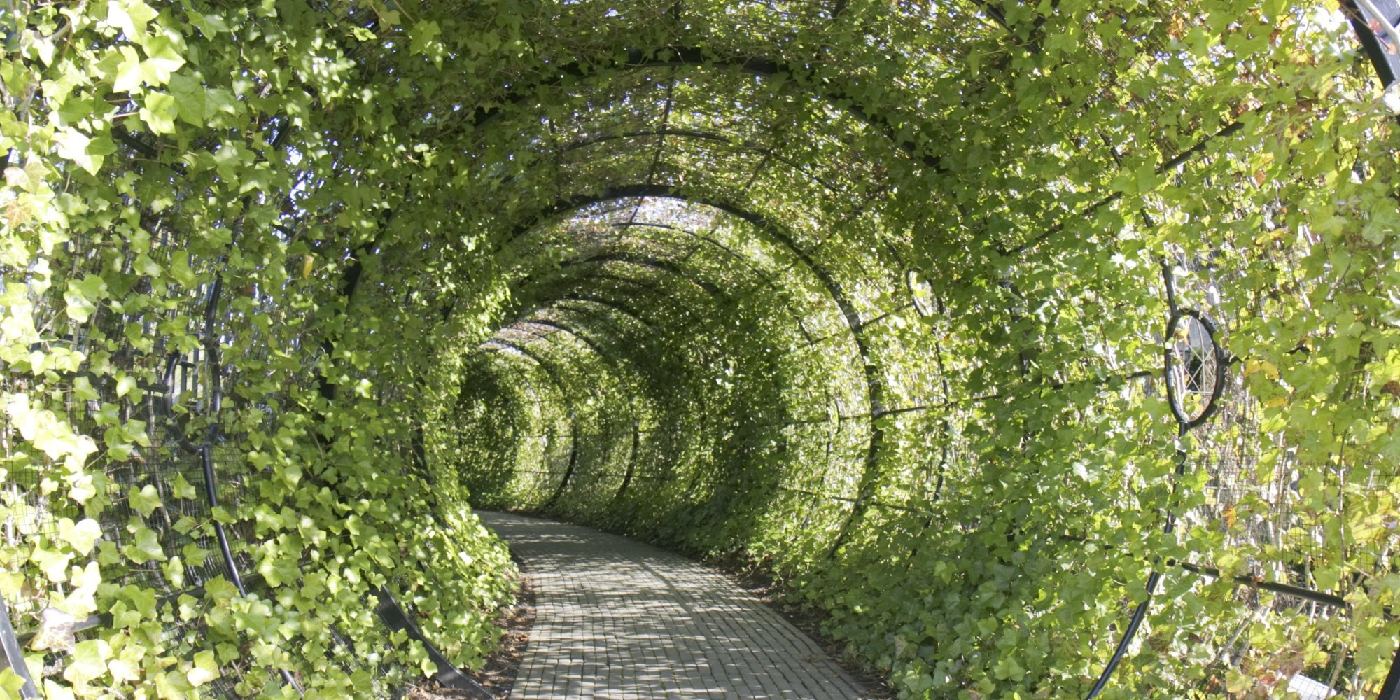 A Beautiful Tourist Garden Full Of Plants That Could Kill ...