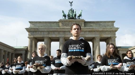 an activist of international animal rights organiz