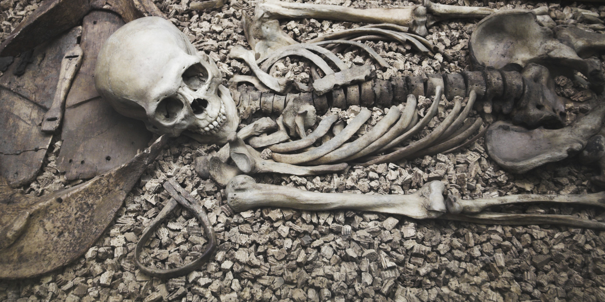 Utah Man Finds Bones In His Backyard And Theyre Probably Human